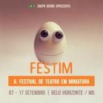 FESTIM 2017 _