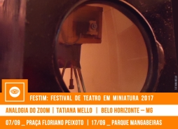 // FESTIM 2017 // ANALOGIA DO ZOOM | TATIANA MELLO