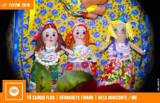 FESTIM 2018 | TÁ CAINDO FLOR | BERNADETE FIORINI
